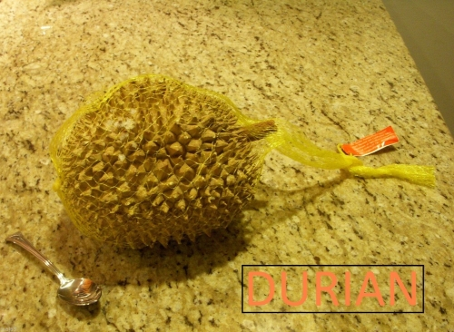 DURIAN: FRESH AND POWDERED   & OTHER HEALTH PRODUCTS & SUPPLIES FOR THE HOME ~E.G.PLOTTPALMTREES.COM