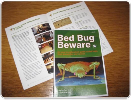 Bed Bug...