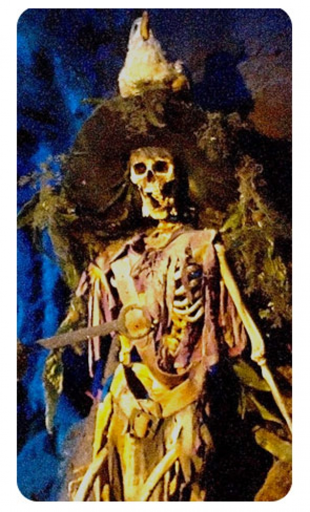 """""""Skeleton Pirate"""" Replacement Standup Decal (Jersey Jack Pirates of the Caribbean)"""