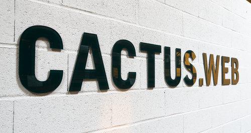 201310211723_cactus_wall_2