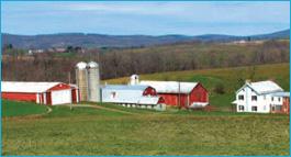 MacRo Farms