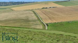 Tips for Improving Landlocked Property