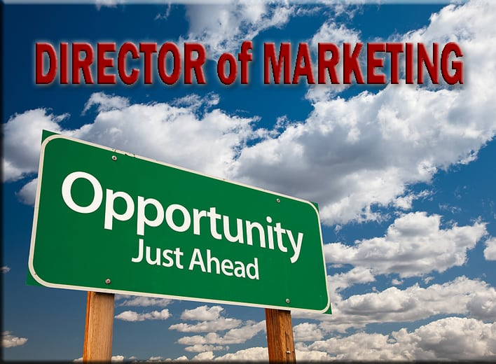 MacRo Ltd seeks full time Director of Marketing
