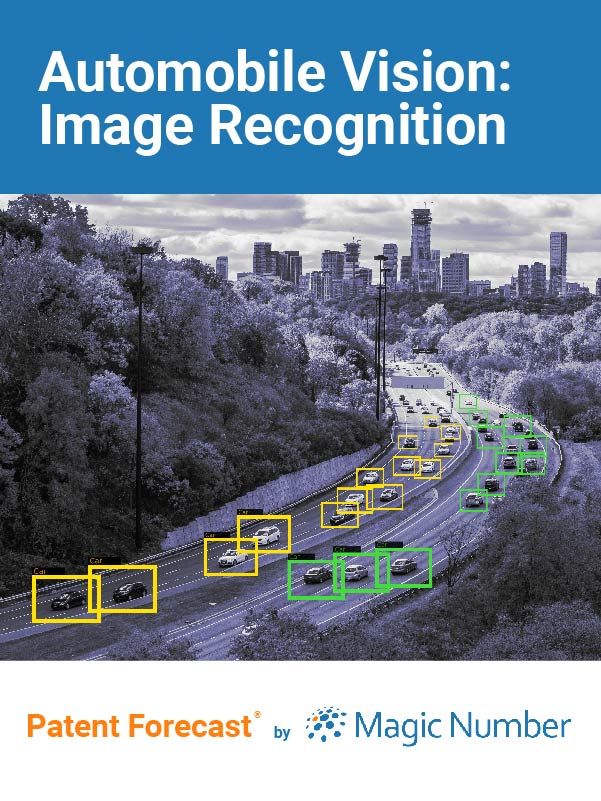 Automobile Vision: Image Recognition