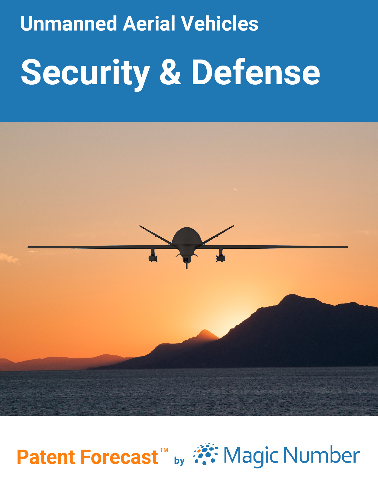Unmanned Aerial Vehicles: Security and Defense