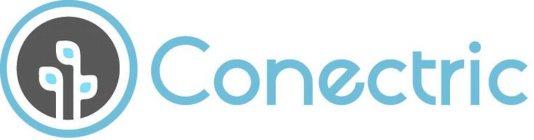 CONECTRIC, LLC