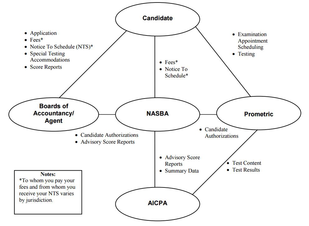 CPA Exam Organization Hierarchy