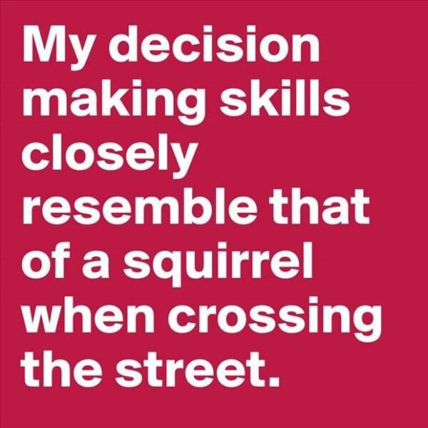 Decision-making-skills-squirrel