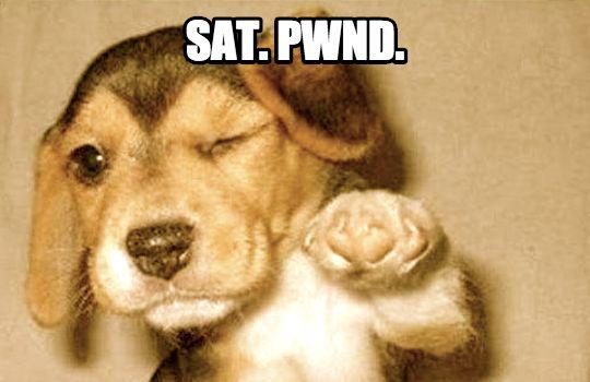 "dog winking ""SAT PWND"" meme"