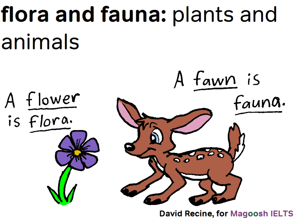 IELTS science vocabulary - flora and fauna - magoosh