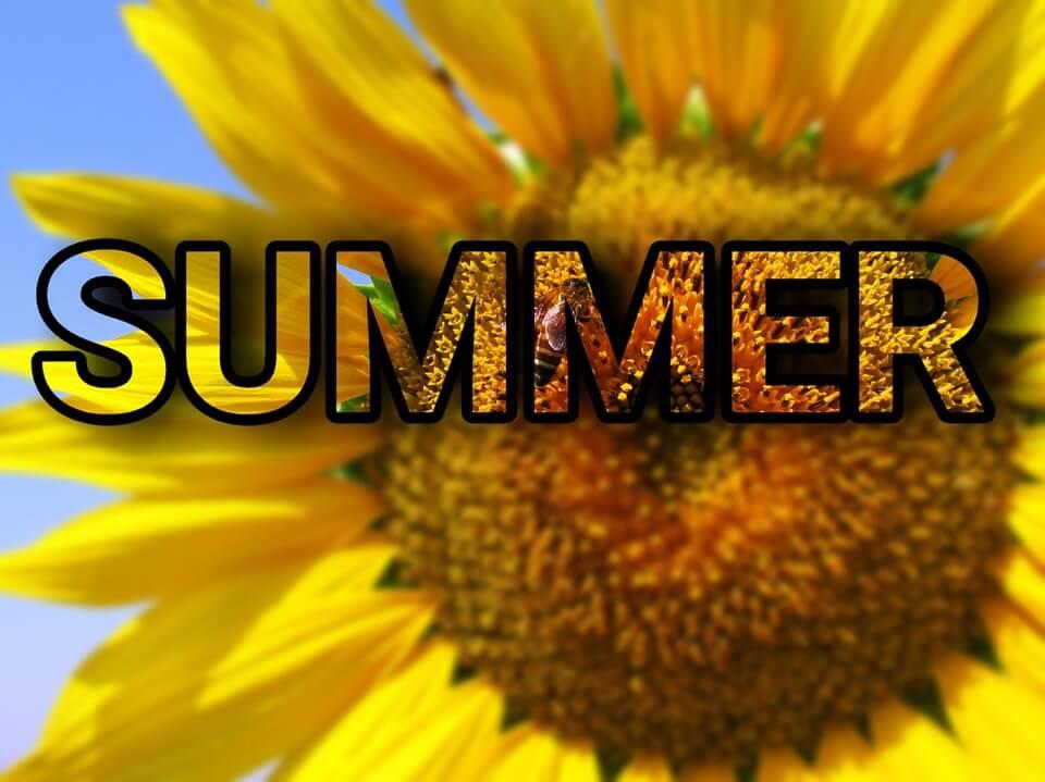 IELTS Summer Prep