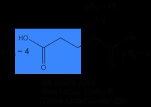MCAT Amino Acids