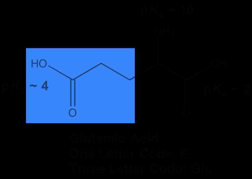 MCAT Amino Acids What to Know Magoosh MCAT Blog