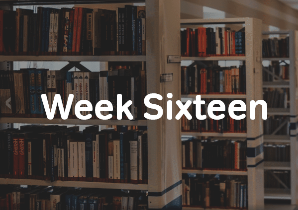 Week 16 of six month SAT study schedule-magoosh