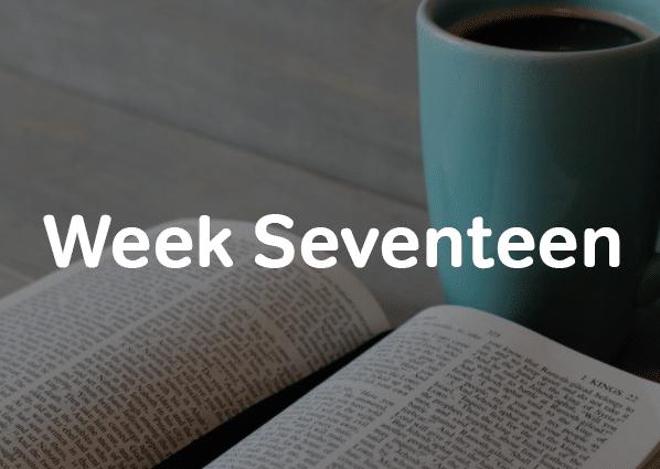 Week 17 of six month SAT study schedule-magoosh