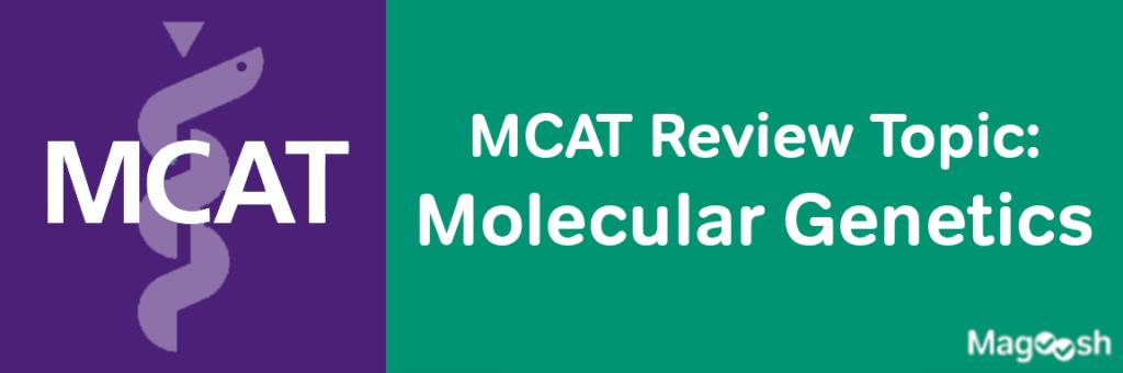 MCAT Molecular Genetics -magoosh