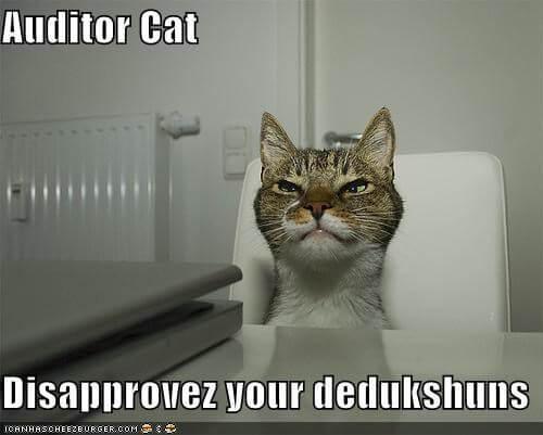 auditor cat