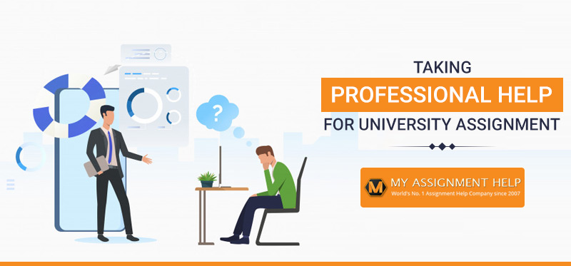 Taking professional help for University Assignment