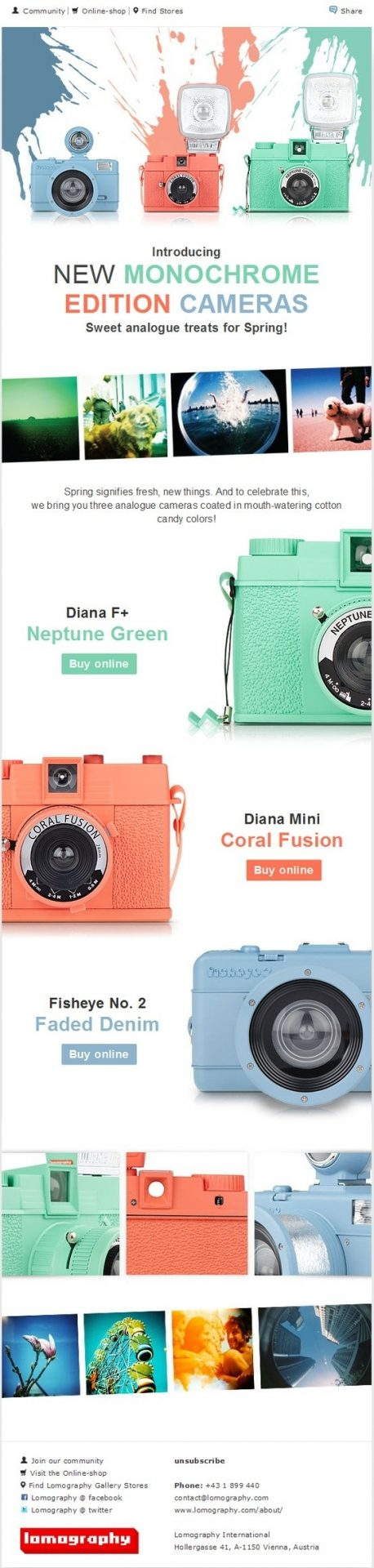 22 Excellent eCommerce Email Templates Examples to Inspire Your Next