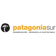 Logo patagoniasur