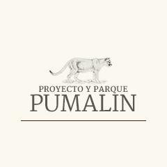 Logo parquepumalin