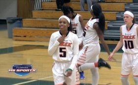 Spruce Creek Hawks fly high in victory over the Mandarin Mustangs, advance to District Finals