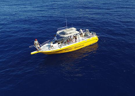 Light Tackle Bottom Fishing (4 Hour)