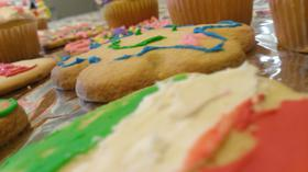 Easter Cupcakes and Cookies