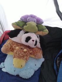 #pillowpetstack