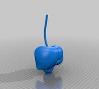 Medical student 3D models for 3D printing | makexyz com