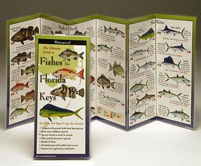 Fish ID Charts