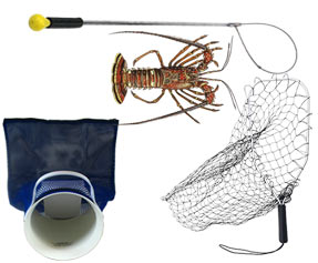 Lobster & Abalone Gear