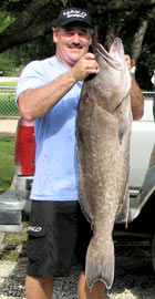 Jim with a couple of nice Groupers South Fl.