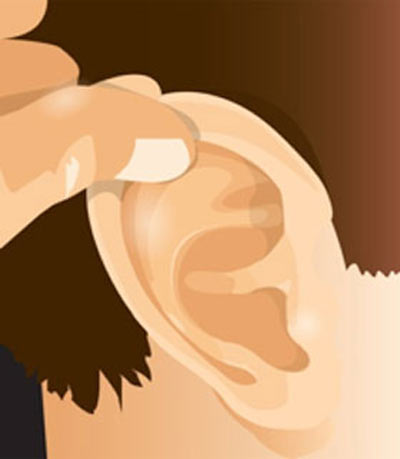 ear shield directions diagram a