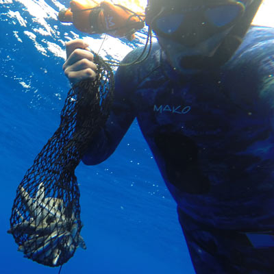 Spearfishing Chum Bag