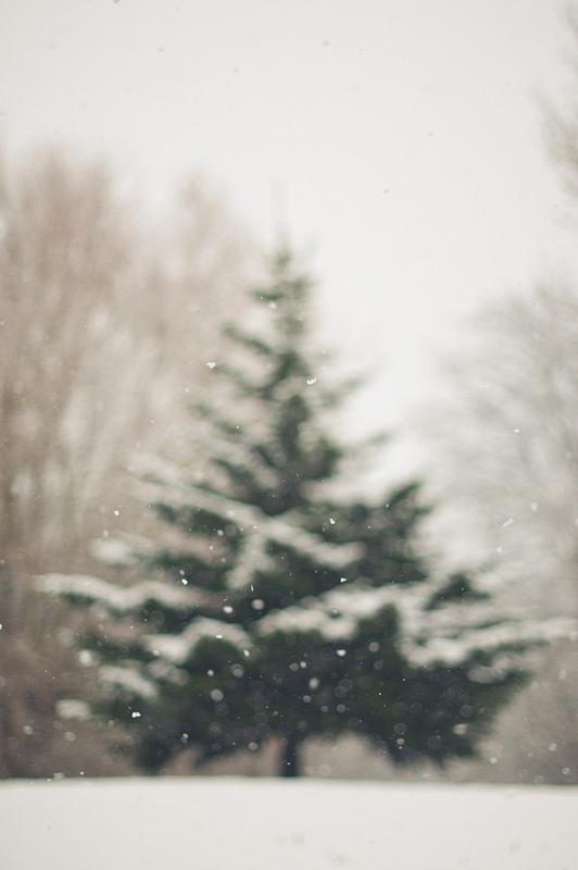 credit: MMortah [http://www.flickr.com/photos/mmortah/8395365738/]