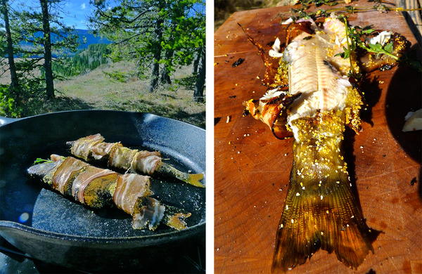 Bacon Trout
