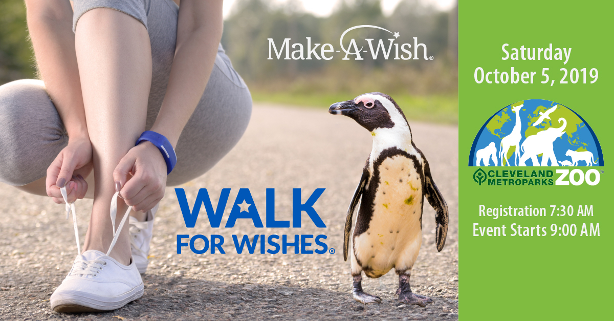 WalkForWishes_LinkedIn_Facebook.jpg#asset:1241
