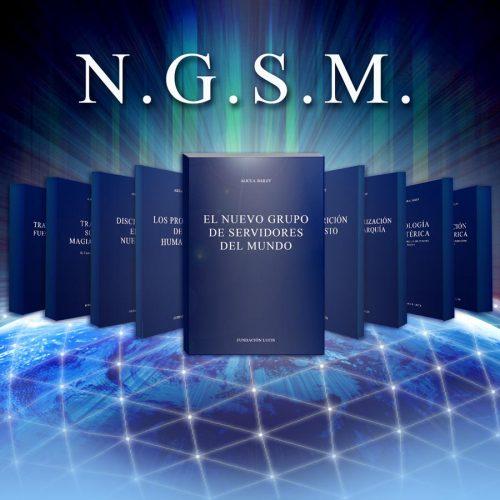 El N.G.S.M: Poder, ideales y tecnica