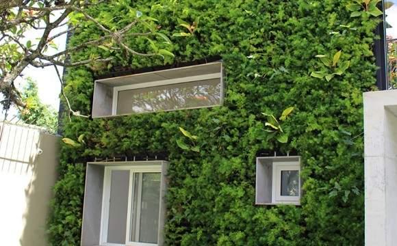 Jardim vertical também funciona como cascata