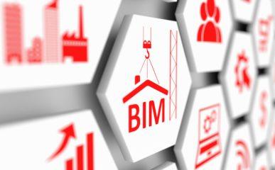 BIMBr Roadmap