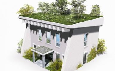 Conheça as vantagens de telhados verdes