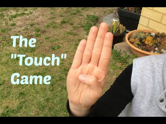 "Dog Training 101 Series – The ""Touch"" game – Targeting game"