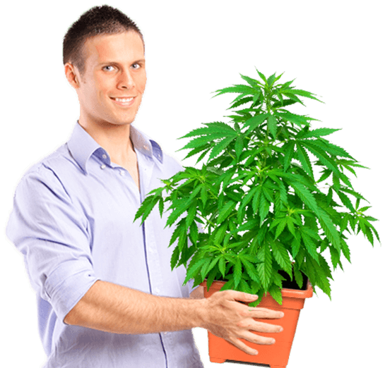 Marijuana University Graduate holding medium size plant