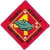 4th Assault Amphibian Bn (4th AAV Bn)