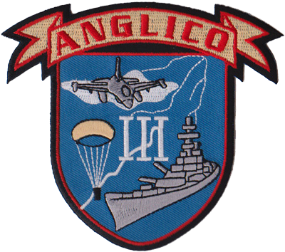 3rd Air Naval Gunfire Liaison Company (ANGLICO)