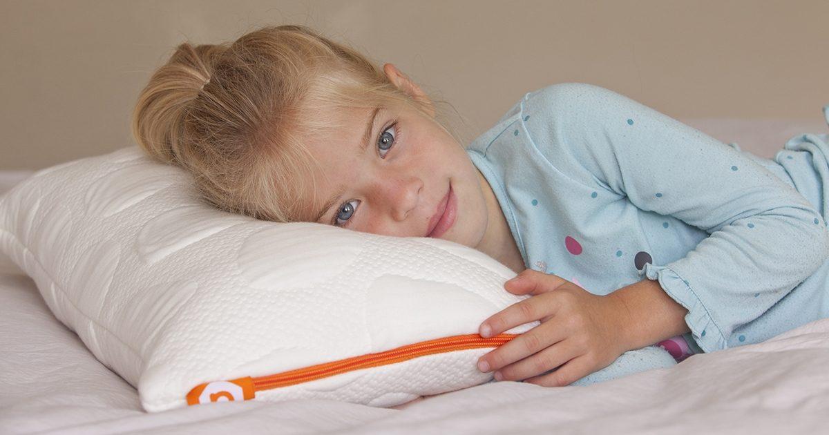Nook Organic Non Toxic Pebble Pillow Jr