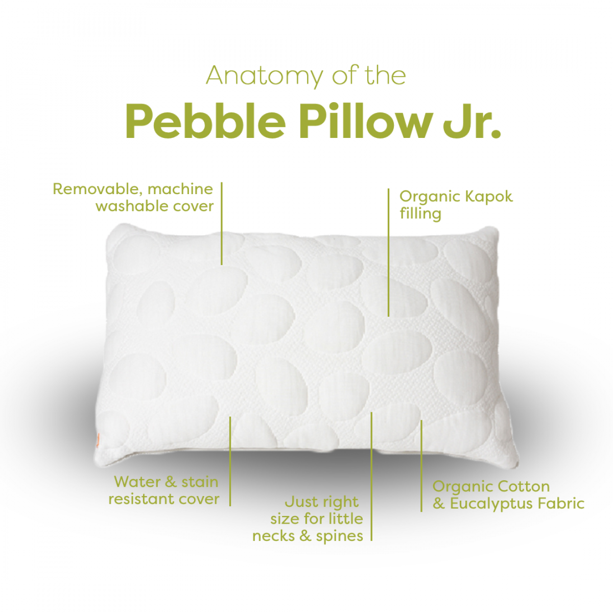 Nook Organic Pebble Pillow Jr Anatomy