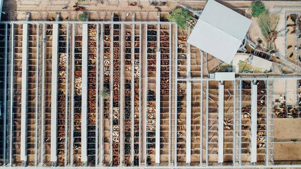 C:\Users\holly.tamakehu\Downloads\Dalby Saleyards Aerial 01.jpg