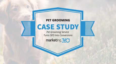 Case Study:  Pet Grooming Service Turns SEO Into Conversions